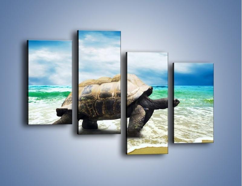 Obraz na płótnie – Jak tu nie kochać żółwi – czteroczęściowy Z251W2