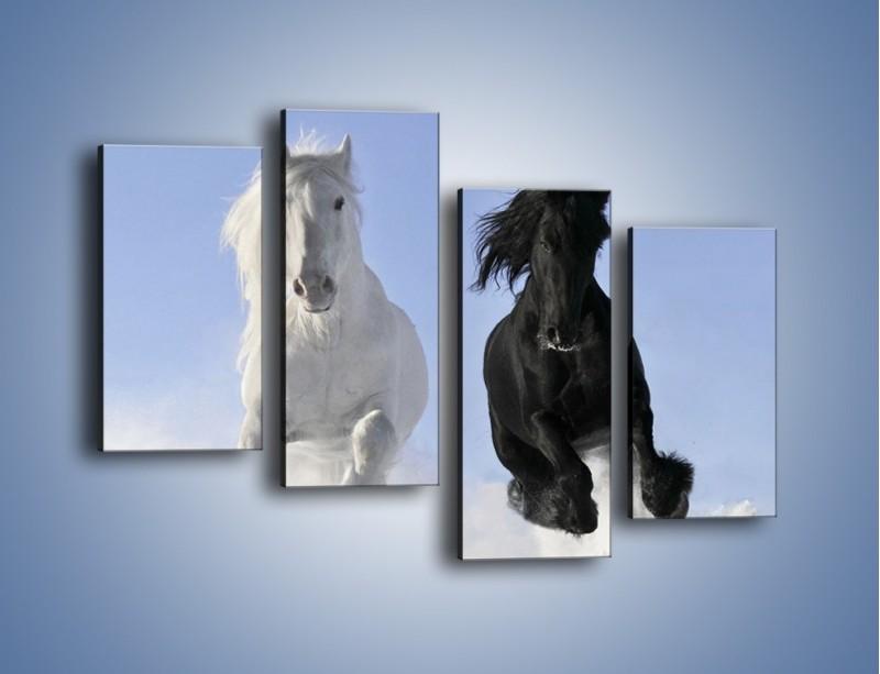 Obraz na płótnie – Czarno-biały wyścig konny – czteroczęściowy Z263W2