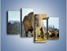 Obraz na płótnie – Ciężkie życie słonia – czteroczęściowy Z273W2
