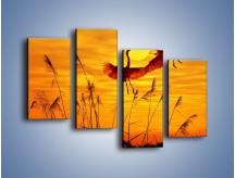 Obraz na płótnie – Czaple i zachód słońca – czteroczęściowy Z302W2