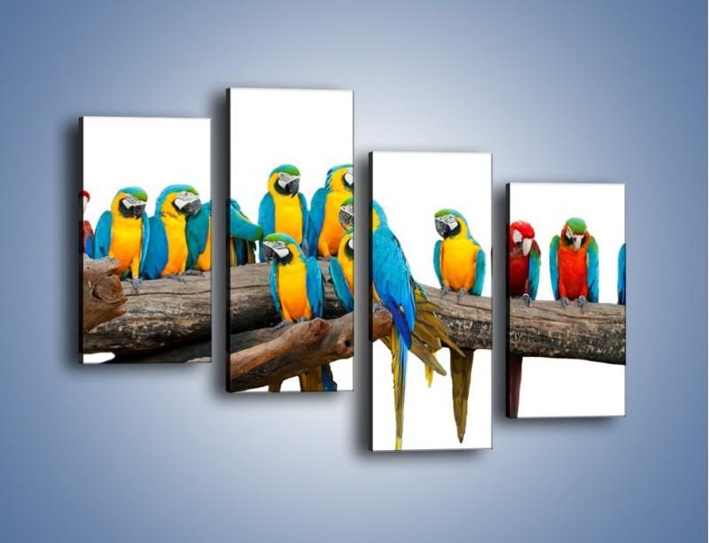 Obraz na płótnie – Kolorowe stado papug – czteroczęściowy Z326W2