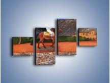 Obraz na płótnie – Arabski szejk na koniu – czteroczęściowy GR052W3