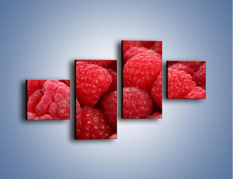 Obraz na płótnie – Zdrowe dojrzałe maliny – czteroczęściowy JN045W3