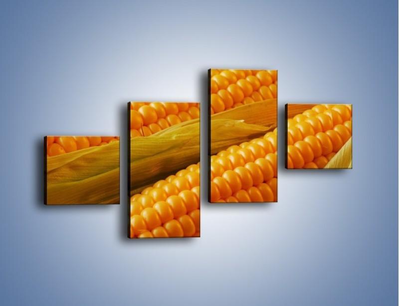 Obraz na płótnie – Kolby dojrzałych kukurydz – czteroczęściowy JN046W3