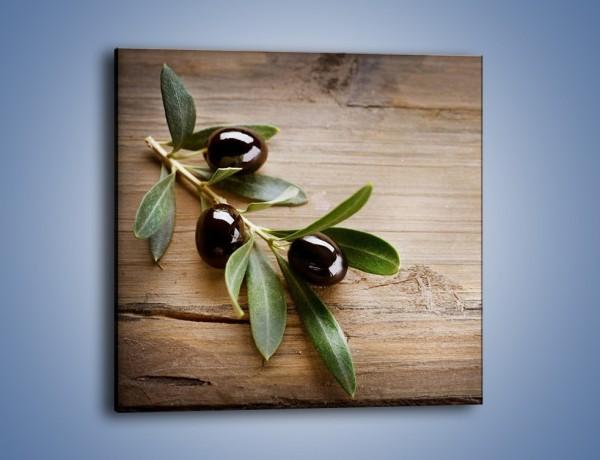 Obraz na płótnie – Dojrzała gałązka oliwek – jednoczęściowy kwadratowy JN334