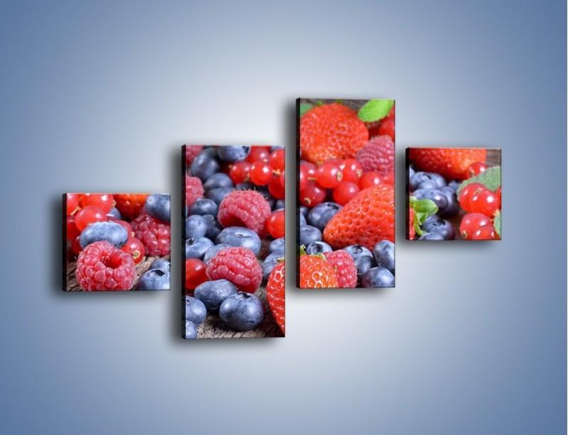 Obraz na płótnie – Owoce z działki – czteroczęściowy JN422W3
