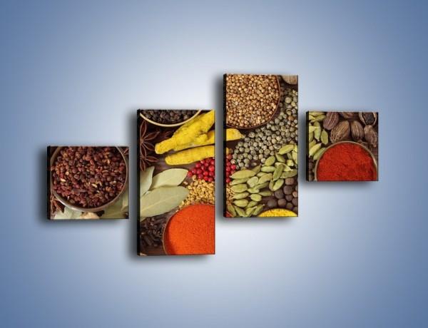 Obraz na płótnie – Przyprawy niezbędne w kuchni – czteroczęściowy JN490W3
