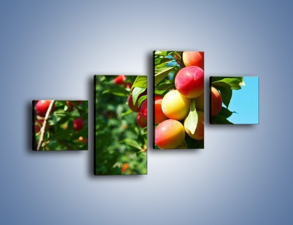Obraz na płótnie – Drzewa pełne brzoskwiń – czteroczęściowy JN495W3