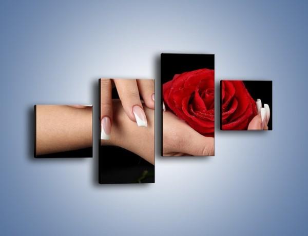 Obraz na płótnie – Czerwona róża w dłoni – czteroczęściowy K037W3