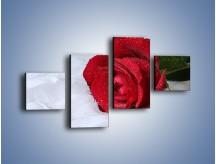 Obraz na płótnie – Bordowa róża na białej pościeli – czteroczęściowy K1023W3