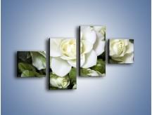 Obraz na płótnie – Białe róże na stole – czteroczęściowy K131W3