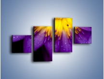 Obraz na płótnie – Baśniowy kwiat z tajemnicą – czteroczęściowy K189W3