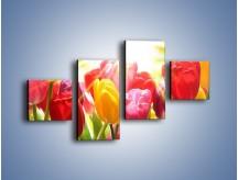 Obraz na płótnie – Bajecznie słoneczne tulipany – czteroczęściowy K428W3