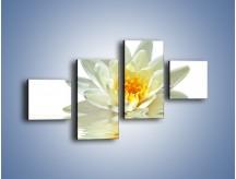 Obraz na płótnie – Biel z pomarańczą w kwiecie – czteroczęściowy K674W3