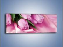 Obraz na płótnie – Atłas wśród tulipanów – jednoczęściowy panoramiczny K152