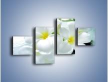 Obraz na płótnie – Białe kwiaty w potoku – czteroczęściowy K991W3