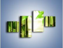 Obraz na płótnie – Bambusowe liście i łodygi – czteroczęściowy KN027W3