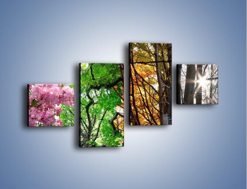 Obraz na płótnie – Drzewa w różnych kolorach – czteroczęściowy KN037W3