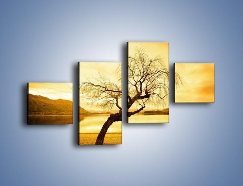 Obraz na płótnie – Pochylone drzewo w sepii – czteroczęściowy KN1033W3