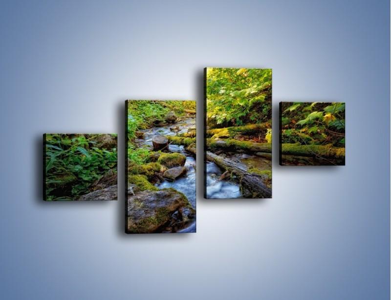 Obraz na płótnie – Drewno ścięte do wody – czteroczęściowy KN1059W3