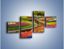 Obraz na płótnie – Aleje kolorowych tulipanów – czteroczęściowy KN1079W3