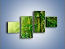 Obraz na płótnie – Bambus w roli głównej – czteroczęściowy KN1202AW3