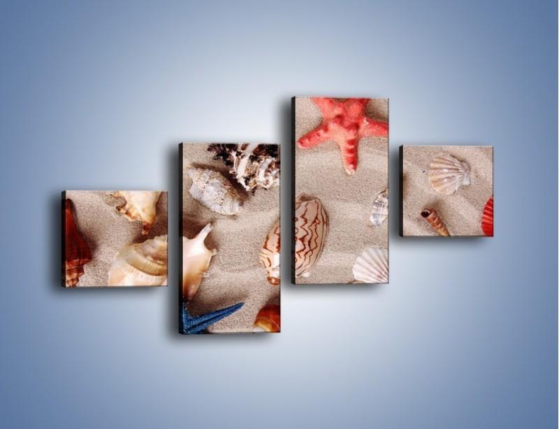 Obraz na płótnie – Kolorowe skorupiaki – czteroczęściowy KN1214AW3