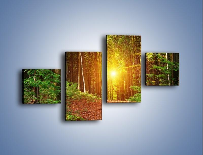 Obraz na płótnie – Polski krajobraz leśny – czteroczęściowy KN1257AW3