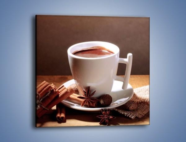 Obraz na płótnie – Gorąca czekolada z cynamonem – jednoczęściowy kwadratowy JN362
