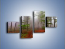 Obraz na płótnie – Budzący się lasek – czteroczęściowy KN1285AW3
