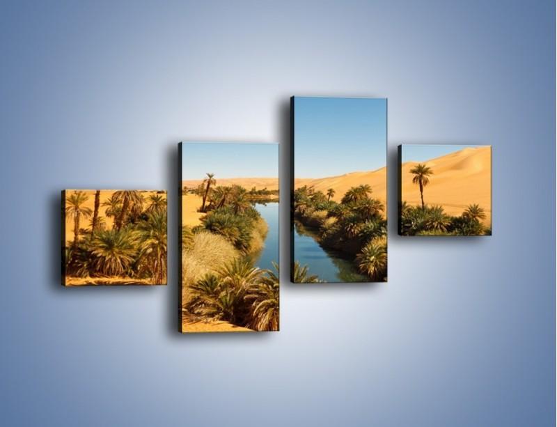 Obraz na płótnie – Woda woda na pustyni – czteroczęściowy KN1294AW3