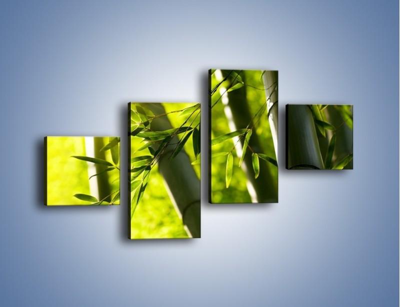 Obraz na płótnie – Twarde łodygi bambusa – czteroczęściowy KN1314AW3