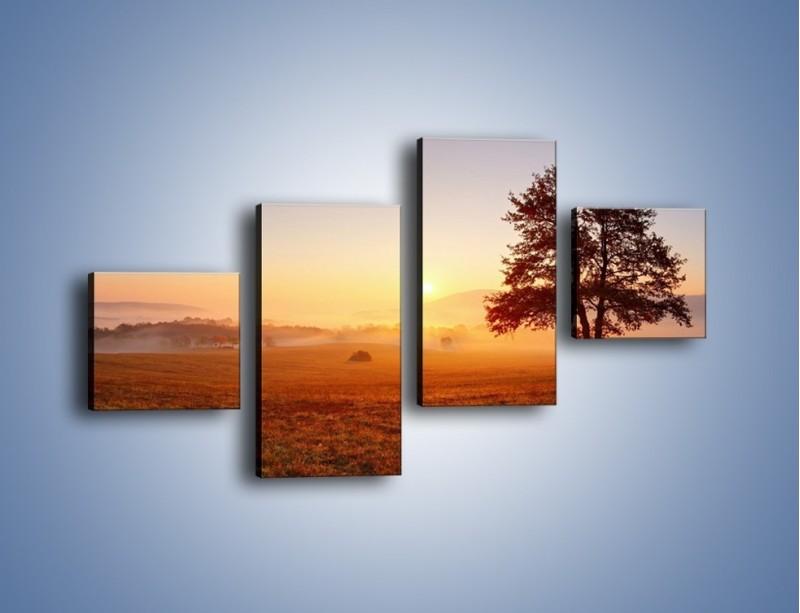 Obraz na płótnie – Krajobraz utopiony we mgle – czteroczęściowy KN1331AW3