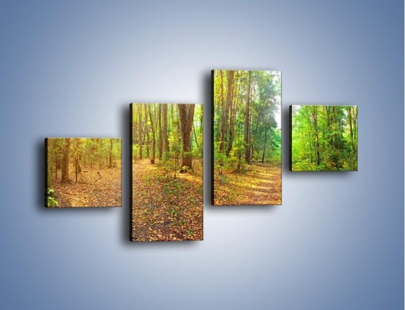 Obraz na płótnie – Przejrzysty piękny las – czteroczęściowy KN1344AW3
