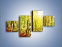 Obraz na płótnie – Brzózki liście i las – czteroczęściowy KN1345AW3
