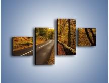 Obraz na płótnie – Asfaltową droga przez las – czteroczęściowy KN169W3