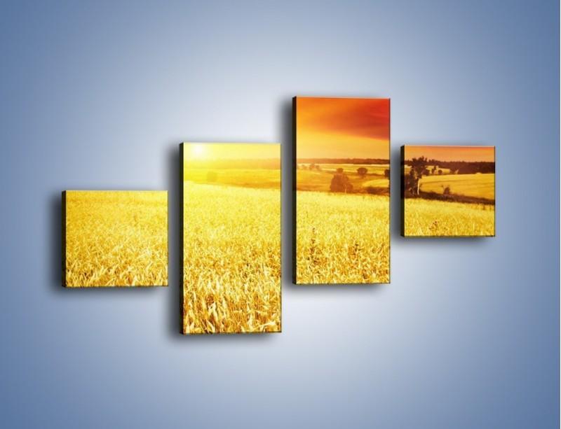 Obraz na płótnie – Zboże złote jak słońce – czteroczęściowy KN398W3