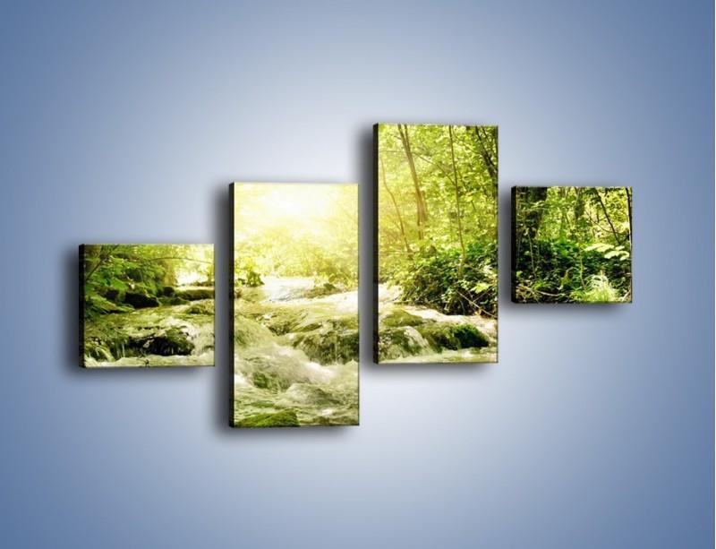 Obraz na płótnie – Wzburzony potok leśny – czteroczęściowy KN508W3