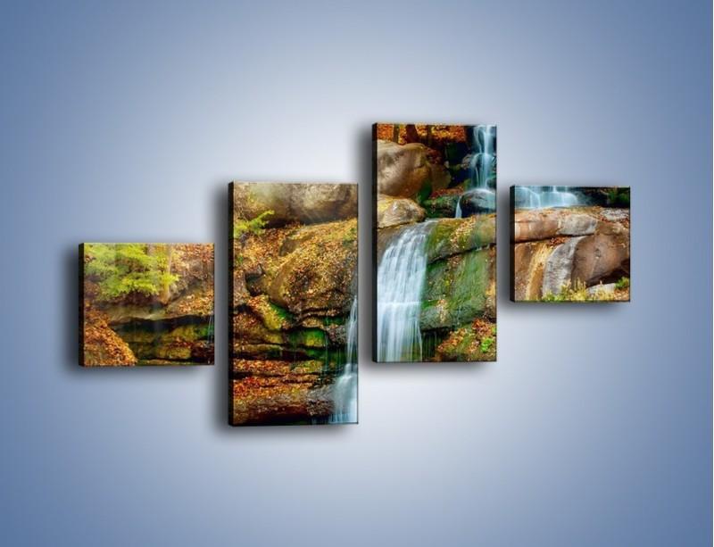 Obraz na płótnie – Leśne podłoże późną jesienią – czteroczęściowy KN563W3