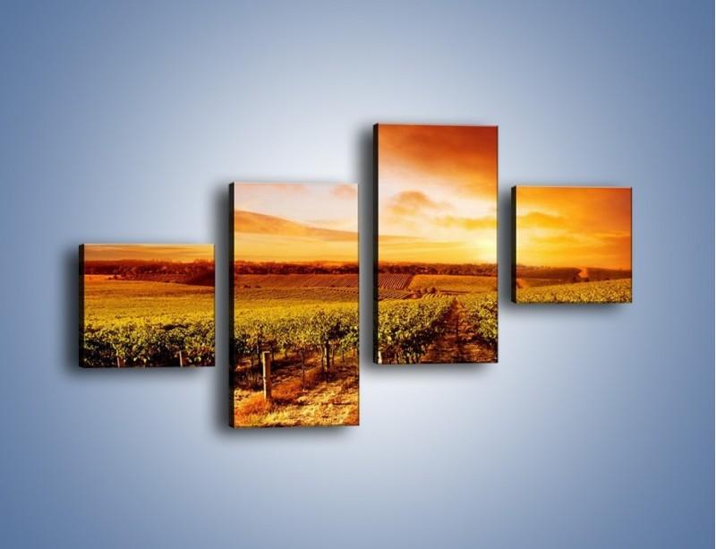 Obraz na płótnie – Ziemia i uprawy – czteroczęściowy KN673W3