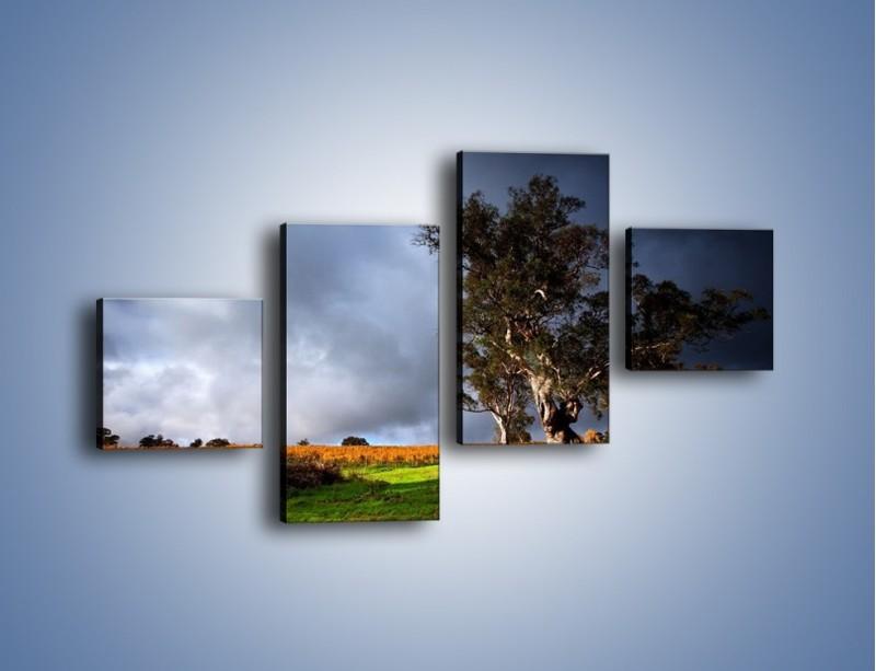 Obraz na płótnie – Burzowe chmury nad polaną – czteroczęściowy KN748W3