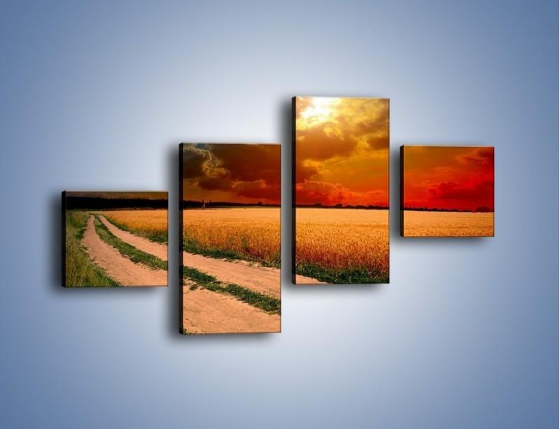 Obraz na płótnie – Zbożowa polana i jej cały urok – czteroczęściowy KN776W3