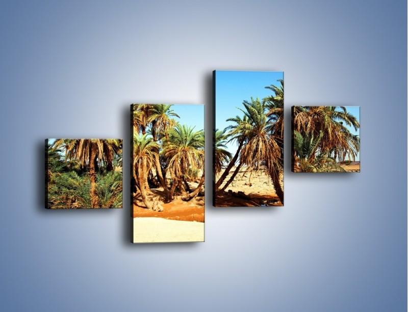 Obraz na płótnie – Palmowa rodzina w komplecie – czteroczęściowy KN809W3