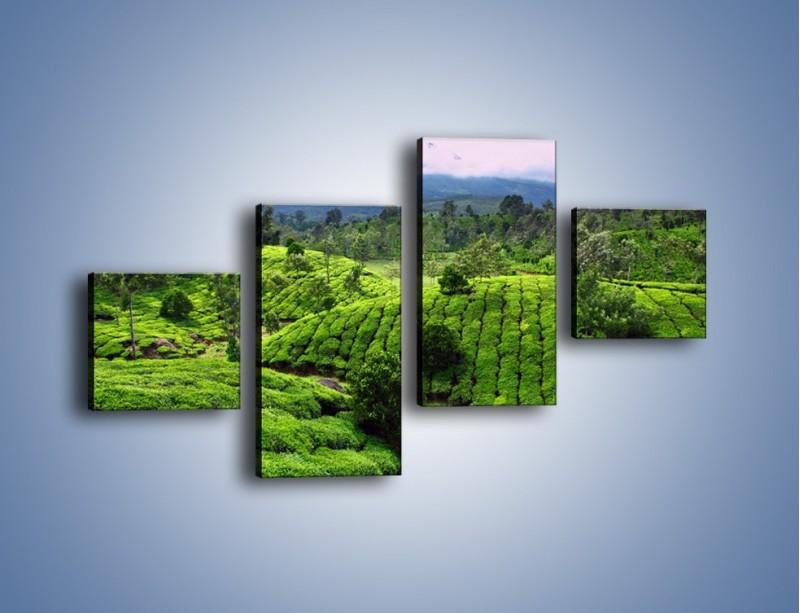Obraz na płótnie – Rozległa zielona kraina – czteroczęściowy KN872W3