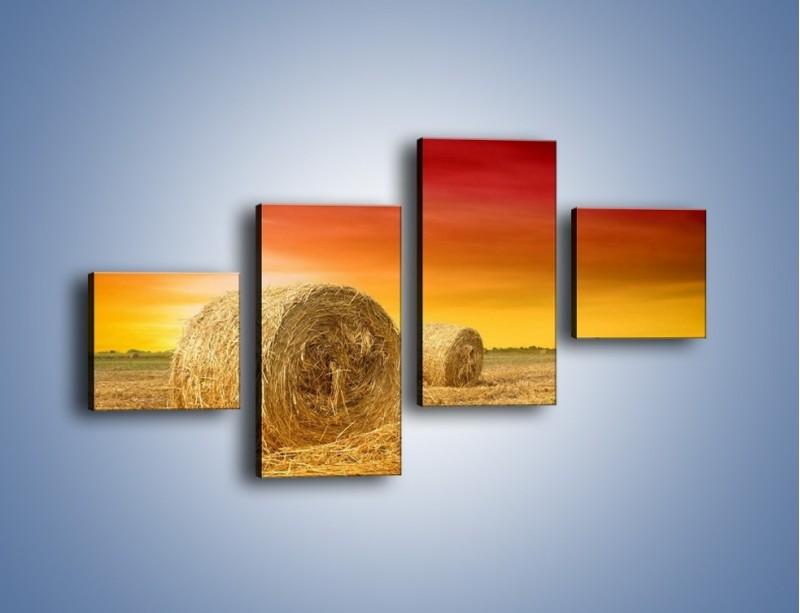 Obraz na płótnie – Koła z siana – czteroczęściowy KN958W3