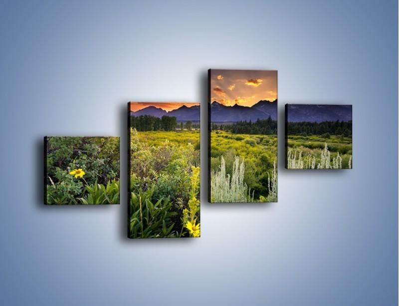 Obraz na płótnie – Wieczorny spokój na polanie – czteroczęściowy KN987W3