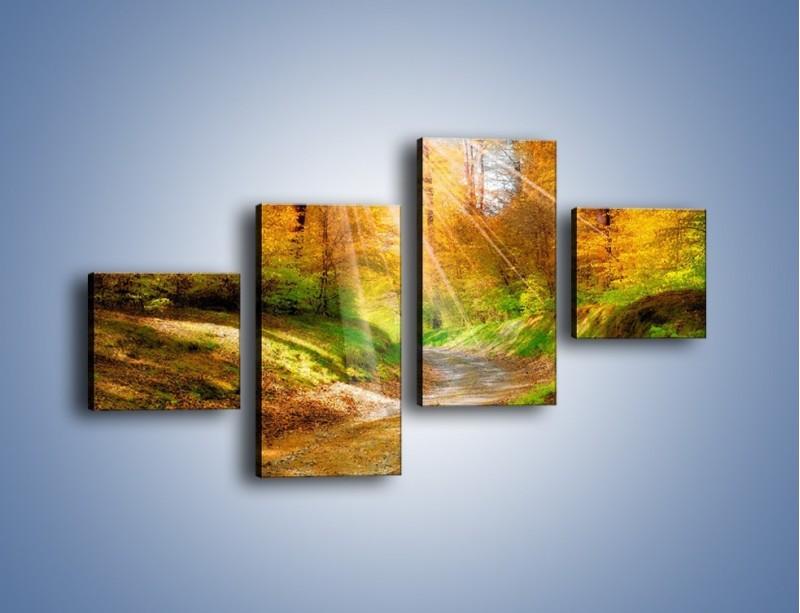 Obraz na płótnie – Promienną i słoneczną ścieżką przez las – czteroczęściowy KN989W3