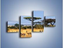 Obraz na płótnie – Antylopy w słonecznej afryce – czteroczęściowy Z003W3
