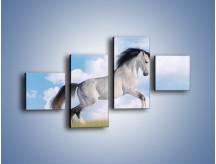 Obraz na płótnie – Białe obłoki i koń – czteroczęściowy Z019W3