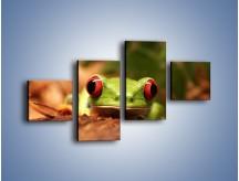 Obraz na płótnie – Bystre oczka małej żabki – czteroczęściowy Z023W3